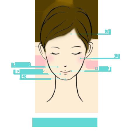 具体的な治療方法 説明図