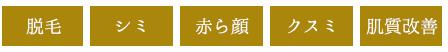 主な効果(脱毛・シミ・赤ら顔・クスミ・肌質改善)